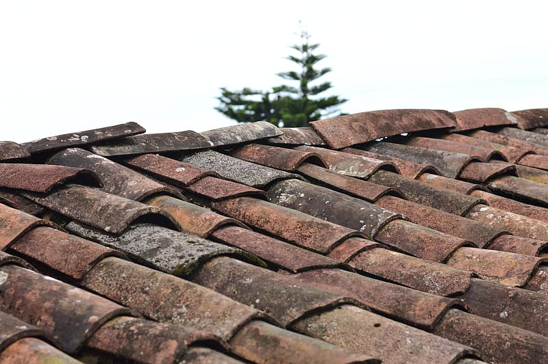 Building Inspection Reports Brown Tiled Roof