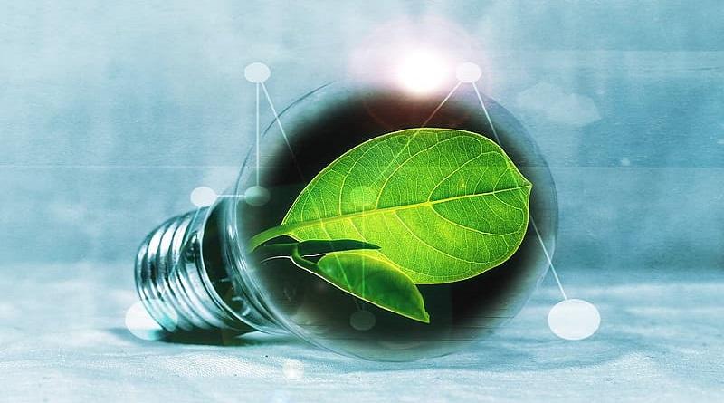 green-leaf-inside-led-bulb-graphics-art