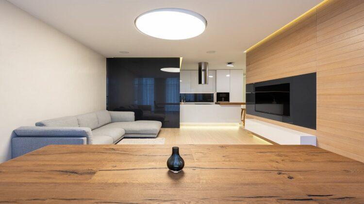 Sustainable Furniture Minimal Modern Open Living Room Kitchen with Flat Screen TV and Sofa
