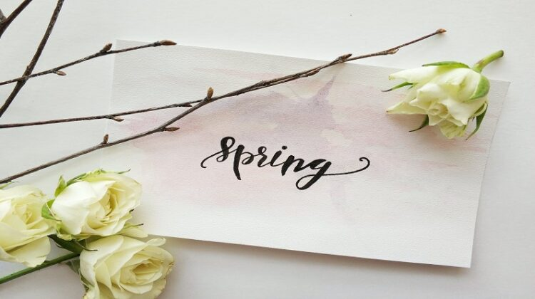 Spring Cleaning Ideas Spring Flatlay with White Roses