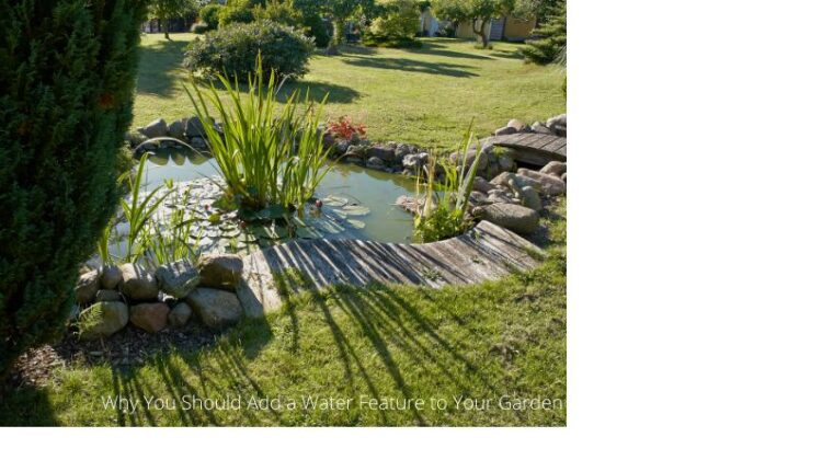 Add a Water Feature to Your Garden