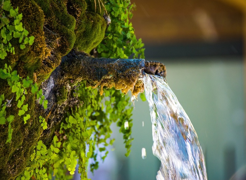 Water feature for a garden Ideas for Your New Garden