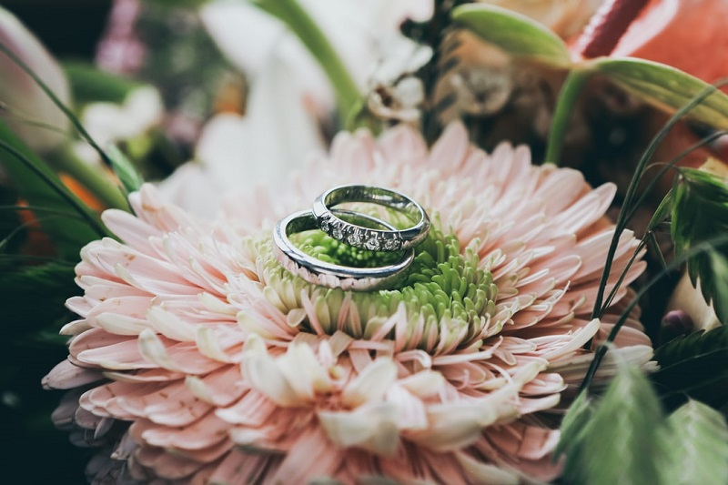 Wedding Rings placed on a pink Chrysanthemum Make Your Wedding Day A Day To Remember