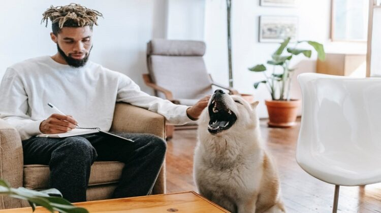 Finding The Perfect Place To Live Man in living room, petting his dog while writing in a notebook