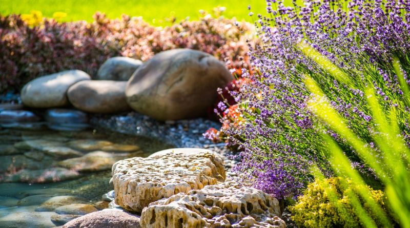 Small pond landscape Finding Expert for Landscaping
