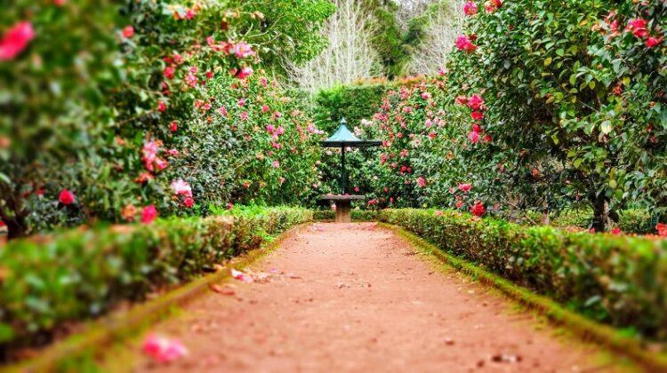 Garden Trends Path in lovely manicured garden